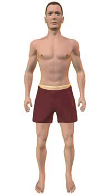 Third image in animation of a figure with compressed abdomen