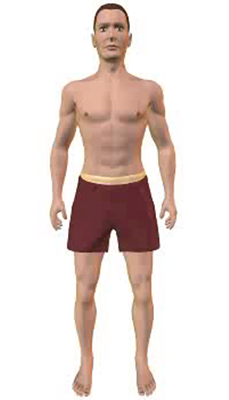 Fourth image in animation of a figure with compressed abdomen