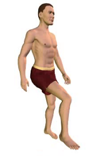 Slide 4 of the animation showing the flexion of the thigh.