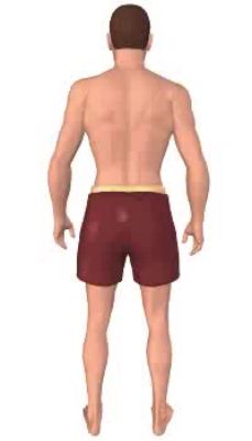 Second image in animation, of figure with thigh in lateral rotation.
