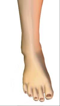 Foot inversion (4)