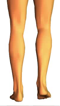 Leg flexion (1)