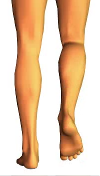 Leg flexion (3)