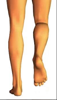 Leg flexion (4)