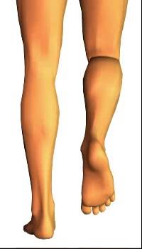 Leg medial rotation (2)