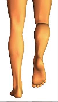 Leg medial rotation (3)
