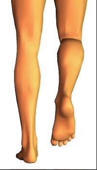 Leg medial rotation (4)