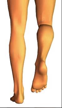 Leg medial rotation (5)