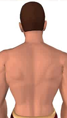Second image in animation of a neck bending laterally