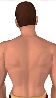 Third image in animation of a neck bending laterally