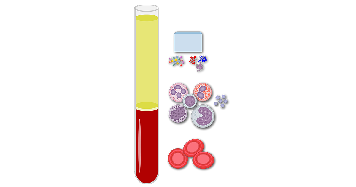 Featured image showing the composition of blood.
