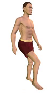 Slide 2 of the animation showing extension of the vertebral column (torso).