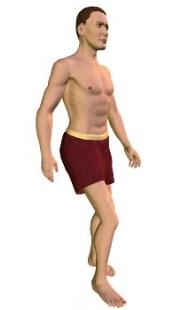 Slide 3 of the animation showing extension of the vertebral column (torso).