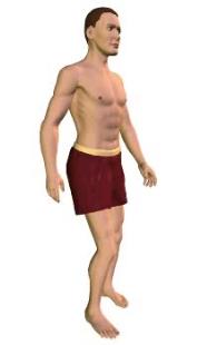 Slide 4 of the animation showing extension of the vertebral column (torso).