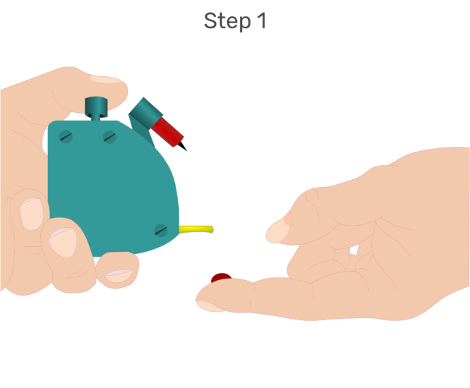 Animation of the index finger being lanced and the blood accumulating.