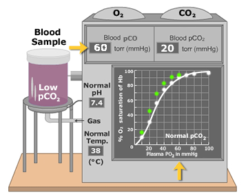 Low partial pressure of CO2