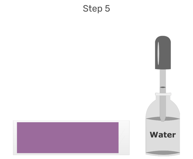 Animation of water being added in order to dilute the stain.