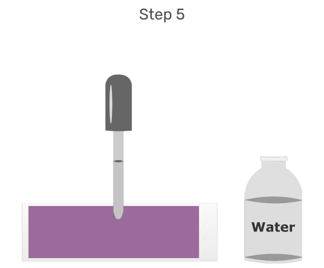 Animation of water being added in order to dilute the stain.v