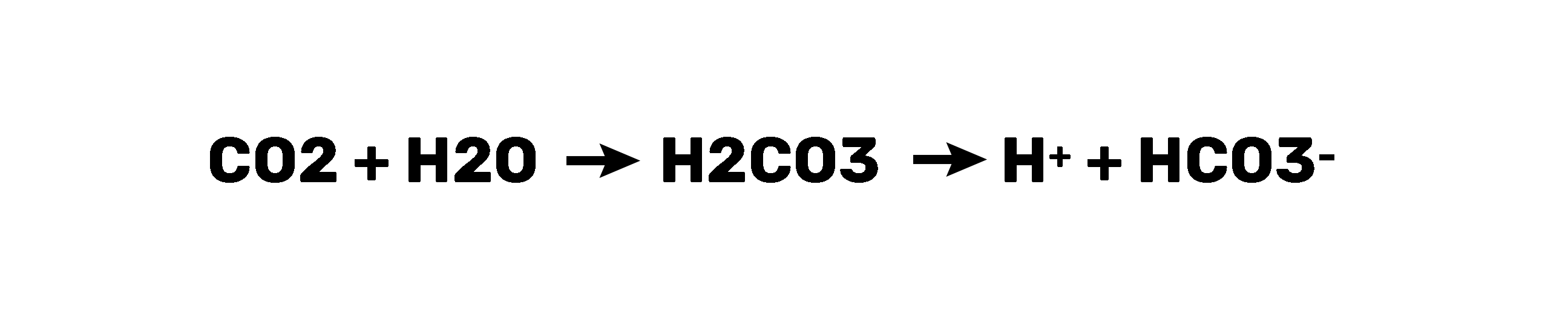 Carbon Dioxide Converted