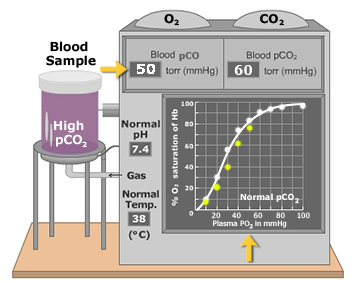 High partial pressure of CO2