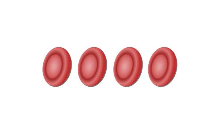 Unlabelled image of red blood cells