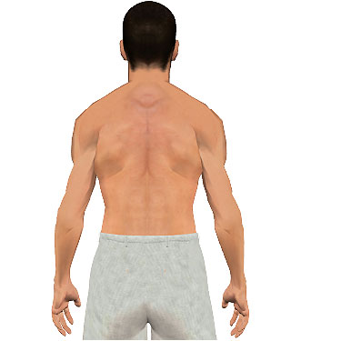 image showing posterior view of figure. Abduction of the arm 1.